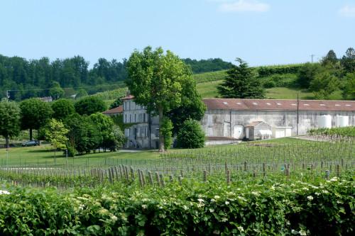 Hennessy Le paysage de La Bataille et les vignes ©CGD