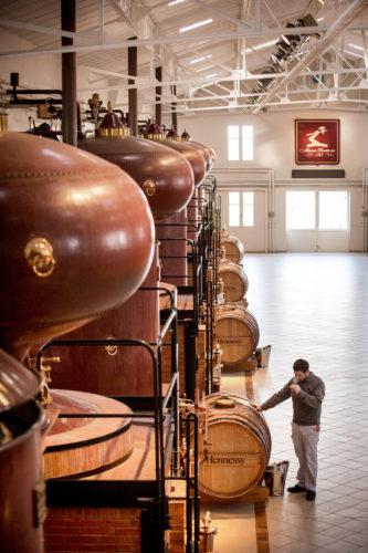 Hennessy - Distillerie du Peu Jas Hennessy and Co - ©AlainBenoit02-jpg